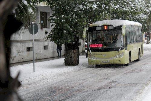ბათუმის ავტოტრანსპორტი